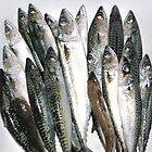 A Big Bunch of Fish by Christina Tang