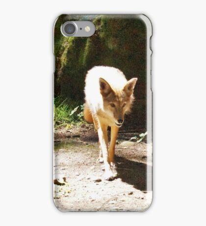 Coyote iPhone Case/Skin