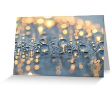 Close up photo of raindrops lit by sunset light Greeting Card
