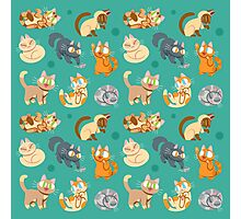 Whole Lotta Cat (Natural version) Photographic Print
