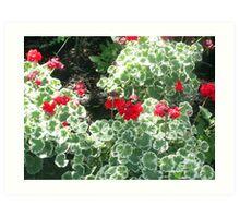 flowers and plants Art Print