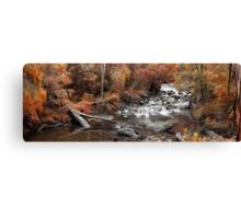 Cascades In Autumn  Canvas Print