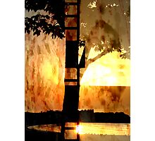 Lum Photographic Print