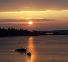Sunrise - Oak Bay by Shannon Ireland