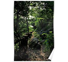 The Lost Trail - Hong Kong. Poster