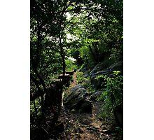 The Lost Trail - Hong Kong. Photographic Print