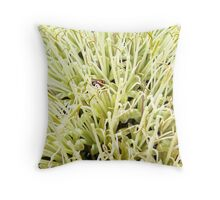 Bee in the blossoms Throw Pillow