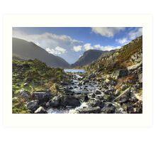 Wild Ireland Art Print