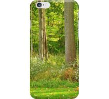 The Woods Out Back ~ Lake Ontario iPhone Case/Skin