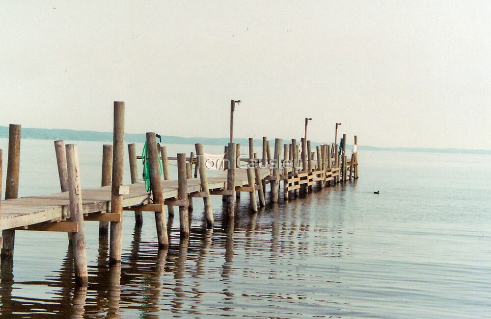 Docks in Traverse City Michigan by Tom Causley