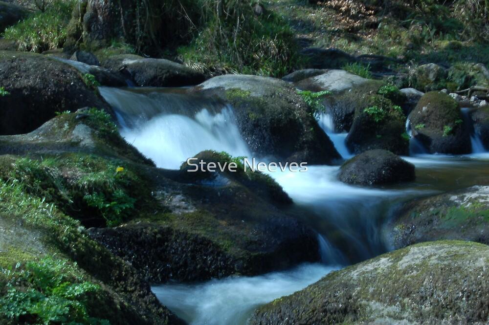 Waterfalls  by Steve Neeves