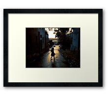 summerstroll Framed Print