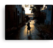 summerstroll Canvas Print