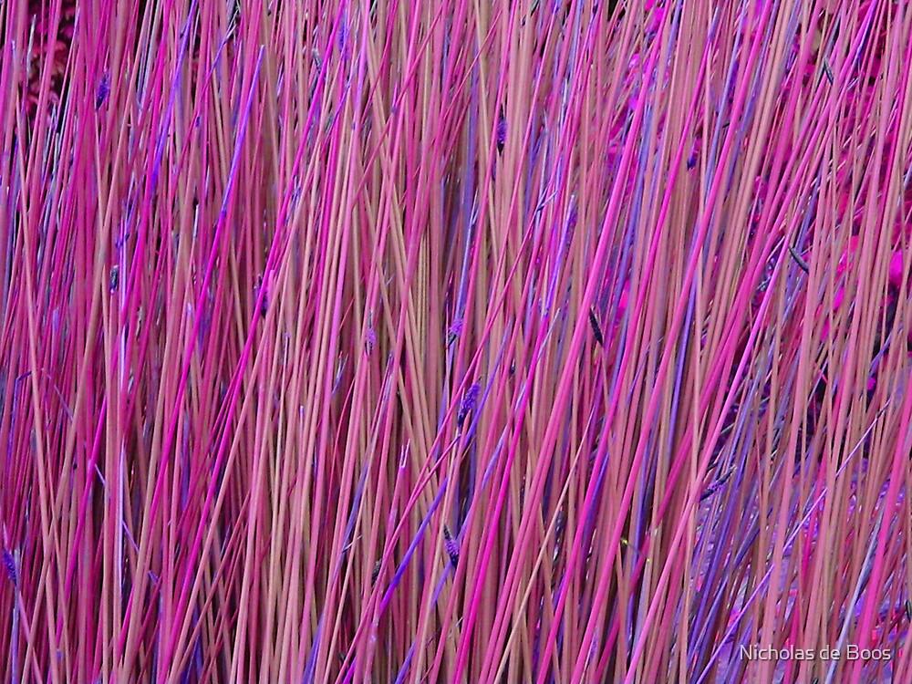 Pink Poles by Nick de Boos