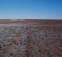 Gibber Plain,Harsh Outback Desert by Joe Mortelliti