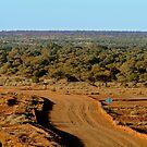 Oodnadatta Track, North Creek by Joe Mortelliti
