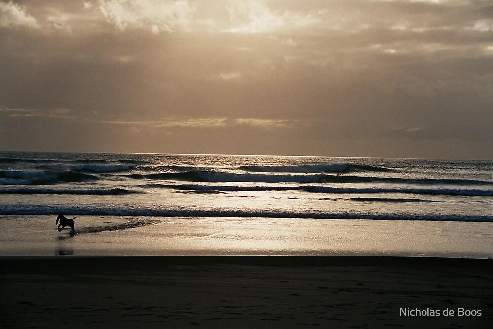 Sunset on the Beach by Nicholas de Boos