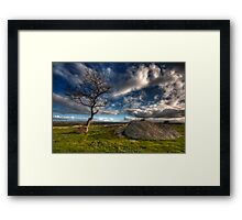 Cloudy Afternoon at Dog Rocks Framed Print