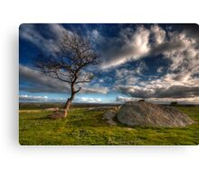 Cloudy Afternoon at Dog Rocks Canvas Print