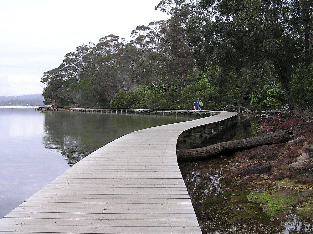 Boardwalk in Merimbula, NSW, Australia by brendak