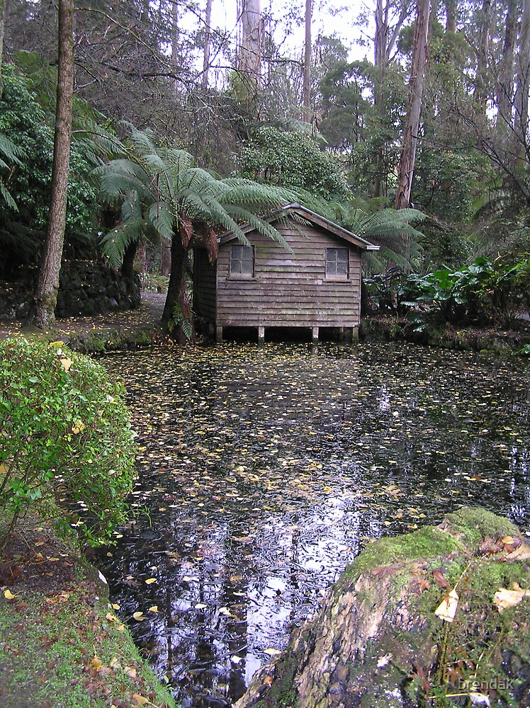 Boat shed in Alfred Nicholas Gardens, Dandenongs, Victoria, Australia by brendak