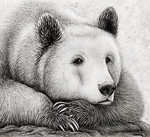 Brooding Bear by Mariya Olshevska
