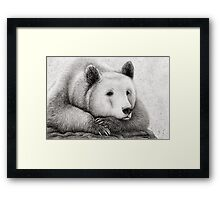 Brooding Bear Framed Print