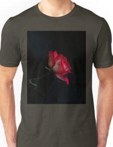 When Love Beckons Unisex T-Shirt