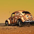 The Beetle by Mark Ingram Photography
