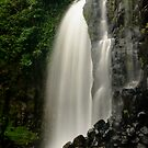 Wet tresses by Seng Mah