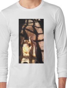 Leaf points through light grate Long Sleeve T-Shirt