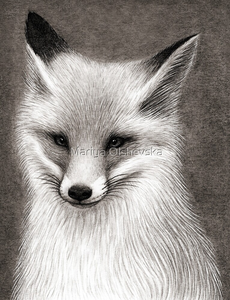 Inari the Fox by Mariya Olshevska