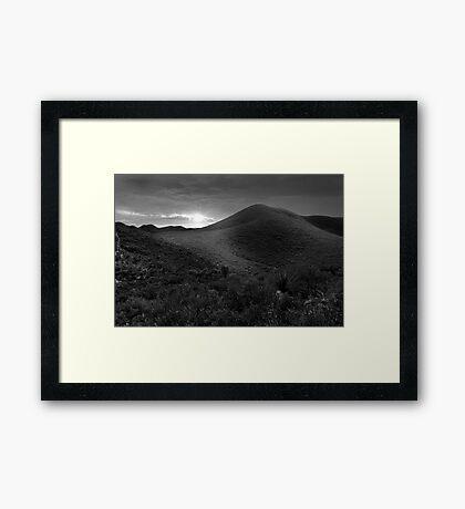 Bathed In Light  Framed Print