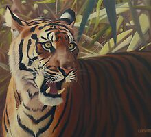 Binjai - Sumatran tigress by Leigh Rust