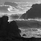 Seascape in monochrome by Christine Beswick