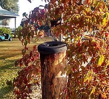 Weathered Fencepost with Tire Top Next to Autumn shrub by Nadia Korths