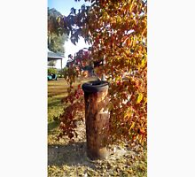 Weathered Fencepost with Tire Top Next to Autumn shrub T-Shirt