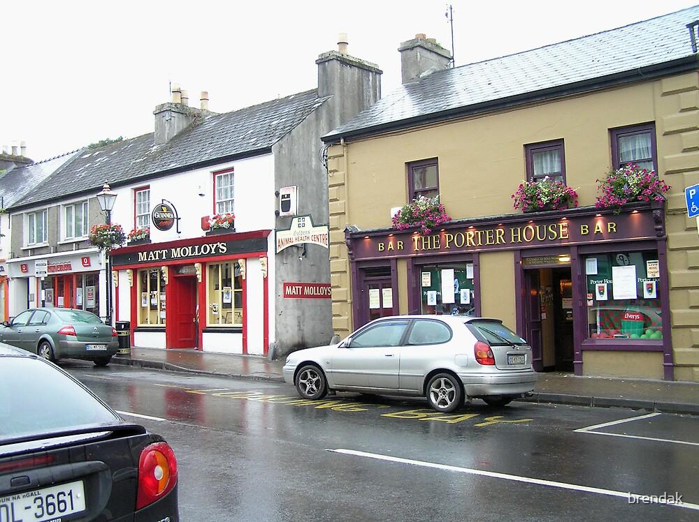 Matt Molloy's pub in Westport, Ireland by brendak