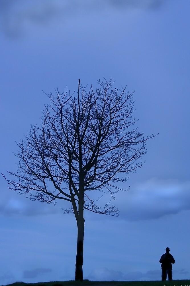Solitude by Chris Clark