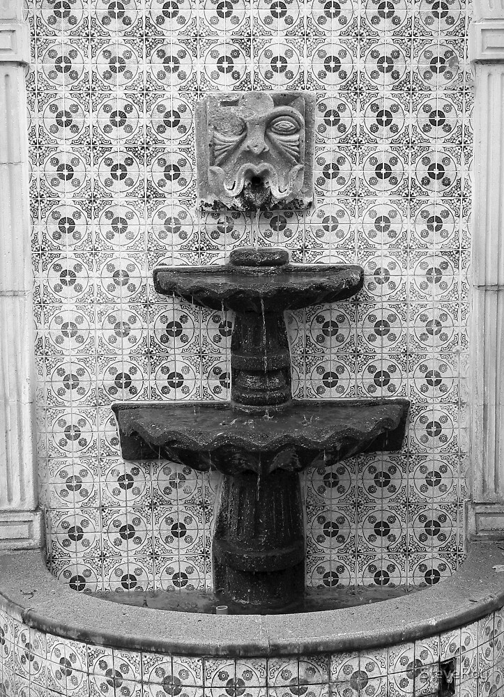 Old Fountain by SteveRoy