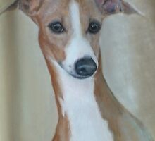 Italian Greyhound by uniqueartworks