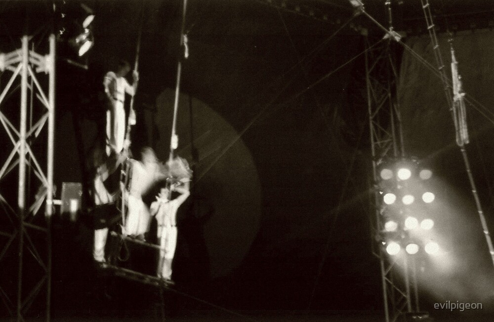 Moscow state circus by evilpigeon