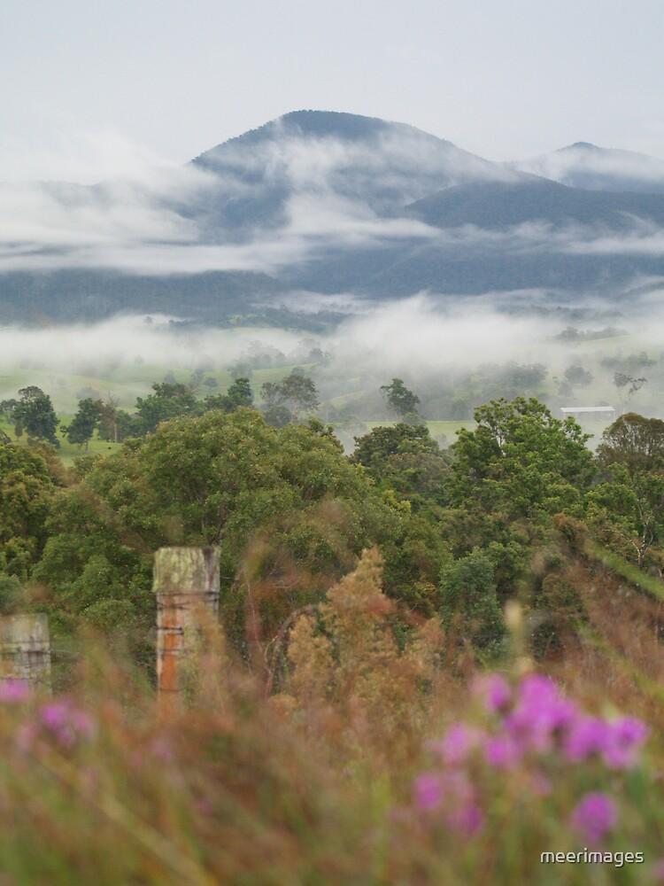 bega valley by meerimages