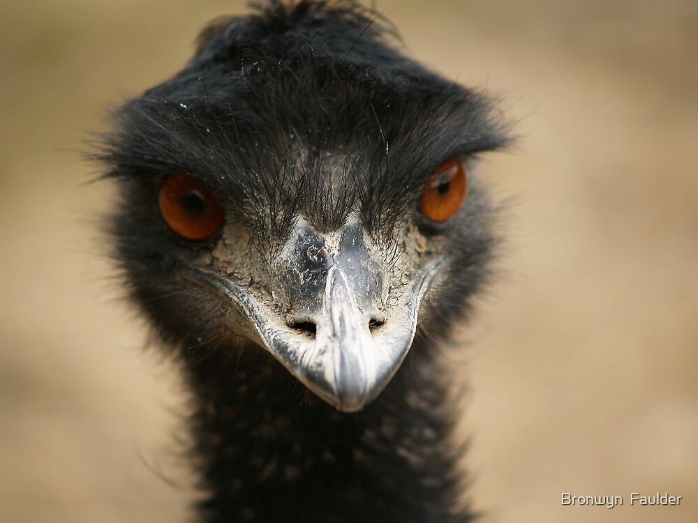 Emu by Bronwyn  Faulder