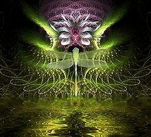 dragonfly magic by webgrrl