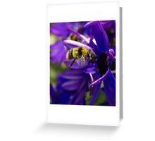 Bumble-Bee Greeting Card