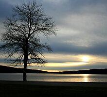 November Sky by patti4glory