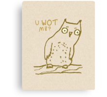 Confused Owl Canvas Print