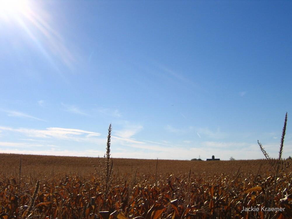 Midwest Afternoon by Jackie Kraemer