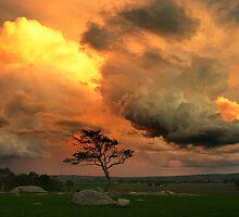 Late Storm 1 - Dog Rocks by Hans Kawitzki